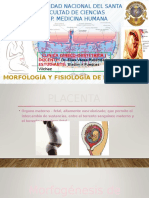 9. Morfología y Fisiología de La Placenta - Bladimir