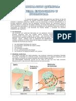Resumen de Sistema Endocrino