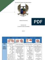 CUADRO-COMPARATIVO-ENFERMEDADES-DE-TRASMICIÓN-SEXUAL.docx
