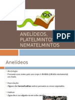 63125973-Aula-7º-ano-ANELIDEOS-PLATELMINTOS-E-NEMATELMINTOS.pptx