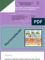 Fitorremediacion y Biosensores en El Control Del Medio Ambiente515