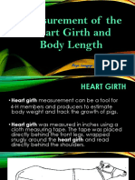 Measurement of the Heart Girth and Body Length