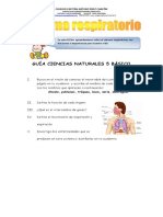 GUIAS CIENCIAS 5
