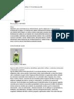 BEBIDA DE SABILA NOPAL Y CUACHALALATE.docx