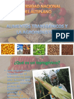 Transgenicos y La Agroindustria
