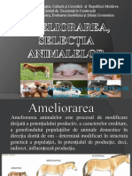 Ameliorarea, Selecția  animalelor