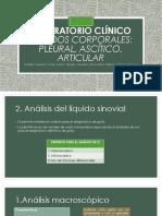2. Analisis de Liquido Sinovial