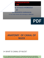 Canal of Nuck