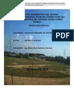 Informe Final Forest Forest
