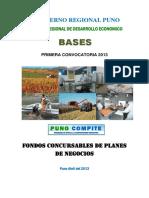 Bases Procompite[1]
