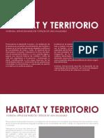 HABITAD Y TERRITORIO HUAMAN POMA