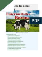 Enfermedades de los bovinos.docx