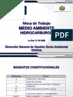 Medio Ambiente_hidrocarburos_16!12!09 III