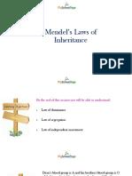 laws of inhertence.pptx