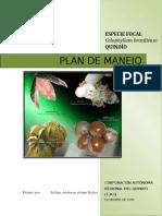 Plan de Manejo Barcino