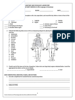 Anatomical Position Worksheet