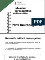 Elaboracion Del Perfil Neurocognitivo
