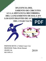 _CDES NM_INVESTIGACIÓN INDIVIDUAL CAS.docx
