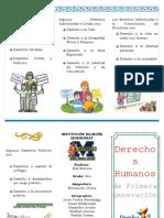 Derechos Individuales o Civiles - TRIFOLIO.docx