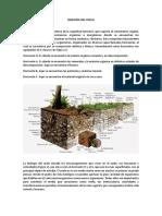 CLASIFICACIÓN DE LOS ORGANISMOS DEL SUELO POR TAMAÑOS.docx