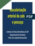 Vascularização Arterial Da Cabeça e Pescoço 08.10.2018