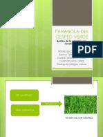Parabola Del Cesped Verde