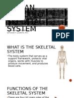 Human Musculo-Skeletal System Grade 6