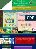 Monómero y Polímero/Módulo 15