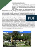 HISTORIA DE YANAHUANCA.docx