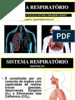 Sistema Respiratórios