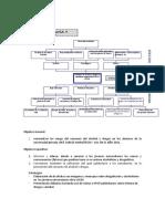117100061-Arbol-Efectos-y-Causas.doc