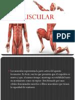 fisiologia-1