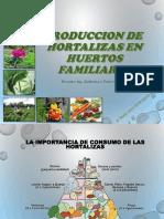 Produccion de Hortalizas-BTH