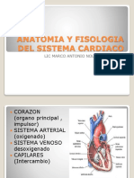 Anatomia y Fisiologia
