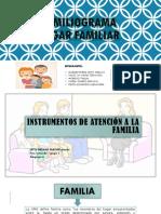 Instrumentos de Atención a La Familia APGAR