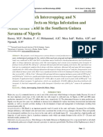 Maize/ Joint Velch Intercropping and N Fertilization Effects on Striga Infestation and Maize Grain Yield in the Southern Guinea Savanna of Nigeria