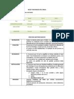 BFH y PMB.docx