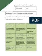 Guía Ortografía Literal y Puntual OA 18
