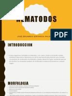Nematodos Jose Eduardo Espinoza Palomino