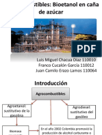 Agrobiocombustibles.pptx
