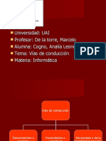 vias-de-conduccin-1221588595566603-9
