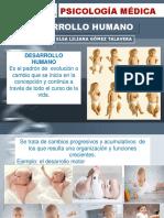 2017 Desarrollo Humano (1)