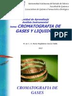 cromatografia tecnicas-1814_1