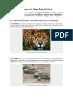 Fauna en La Selva Baja Del Perú