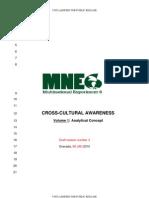 4.3 Cross Cultural Awareness Analytical Concept_third Draft