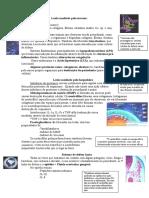 Patogênese Das Doenças Periodontais II