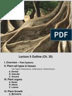 05 - Plant Structure, Growth Development (Ch.35)