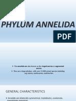 Annelida Presentation (2)