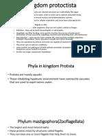 Kingdom protoctista.pptx