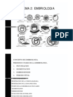 Tema 2 Embriologia